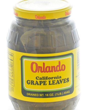 Orlando_Grape_Leaves__85932.jpg