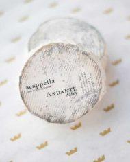 Andante-Dairy-Acappella-1-web