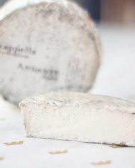 Andante-Dairy-Acappella-3-web