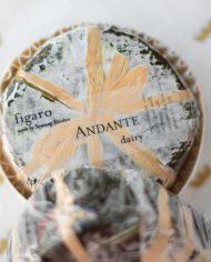 Andante-Dairy-Figaro-1-web
