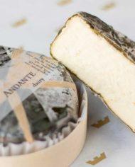 Andante-Dairy-Figaro-4-web