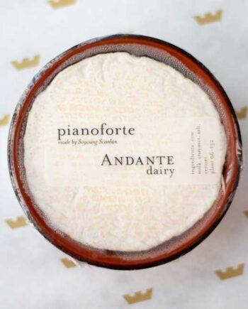 Andante-Dairy-Pianoforte-1-web