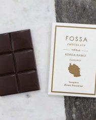 Fossa-Tanzania-72-Styled