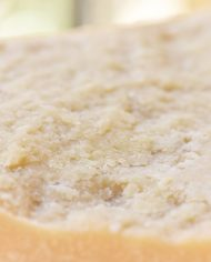 Parmigiano-Reggiano-2-Year-2