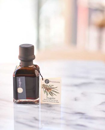 Primitivizia-Mugolio-Pine-Cone-Bud-Syrup-100-ml-web